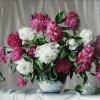 Розовые и белые пионы. Торжественный букет